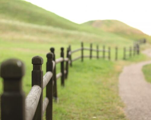 landscape_field_fence_wood_green_nature_fields_agriculture-950482
